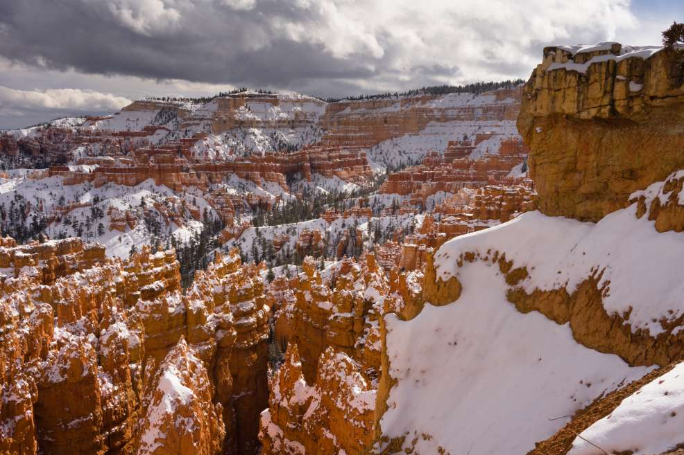 Fresh snow in Bryce Canyon National Park